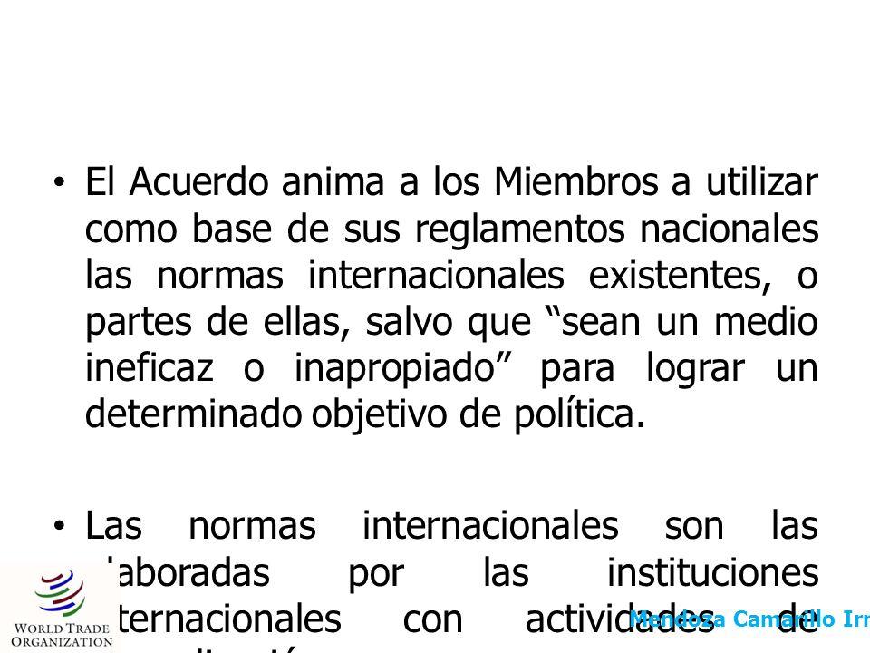 PARTICIPACIÓN EN LAS INTITUCIONES INTERNACIONALES CON ACTIVIDADES DE NORMALIZACIÓN El Acuerdo OTC no contiene una definición precisa de las instituciones internacionales con actividades de normalización.