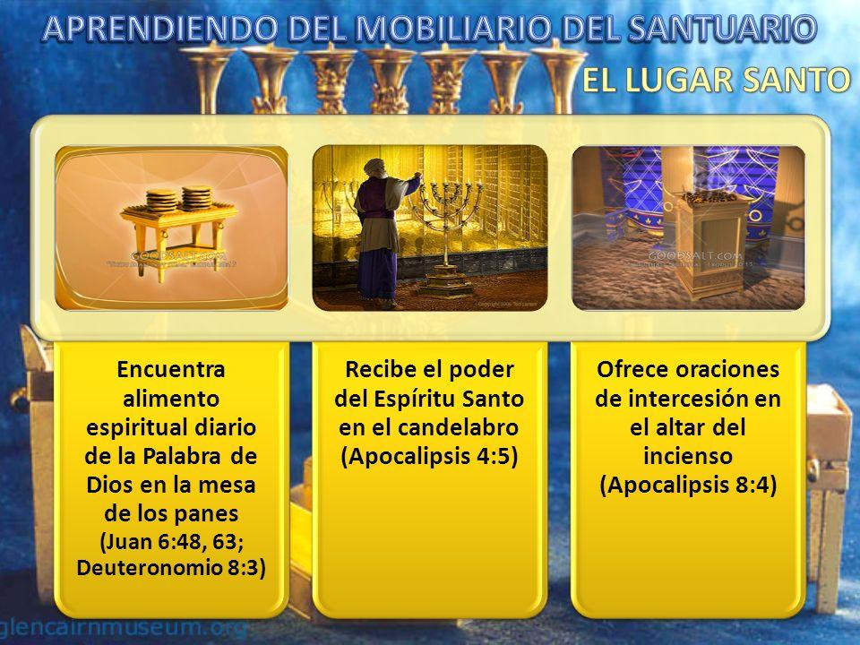 Encuentra una limpieza profunda en el Trono de Dios representado por el Arca (Levítico 16:30)