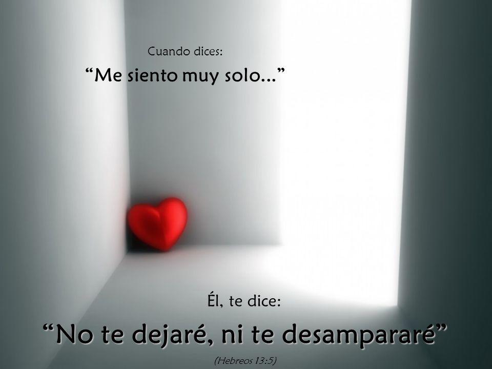 Cuando dices: Me siento muy solo... Él, te dice: No te dejaré, ni te desampararé (Hebreos 13:5)