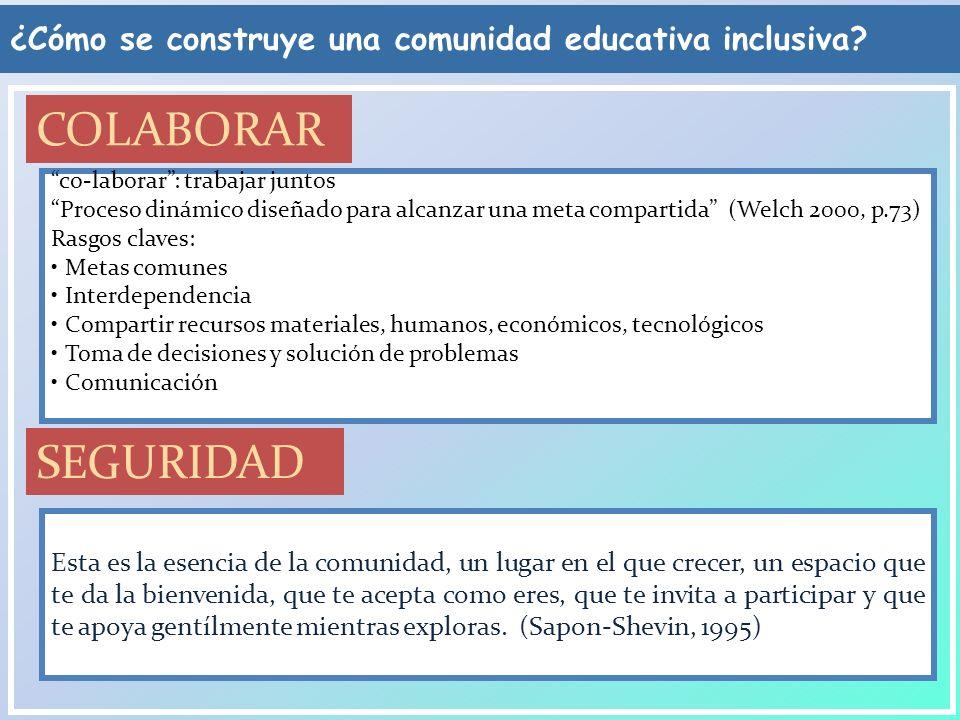 Crear una comunidad de aprendizaje El docente de apoyo El director del colegio El docente del aula Las familias Y el resto de la comunidad educativa