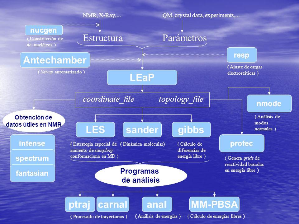 EstructuraParámetros LEaP NMR, X-Ray,...QM, crystal data, experiments,...