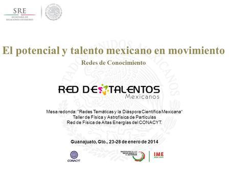 Instituto De Los Mexicanos En El Exterior Mtro Francisco De La Torre Galindo Director Ejecutivo