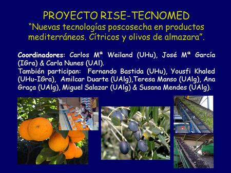 PROYECTO RISE-TECNOMED