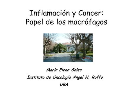 Instituto de Oncología Angel H. Roffo