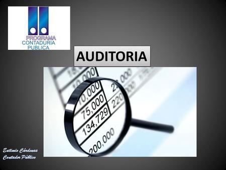 Manual de auditoria ilacif