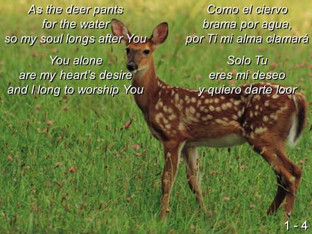 As the deer pants for the water so my soul longs after You You alone are my heart's desire and I long to worship You As the deer pants for the water so.