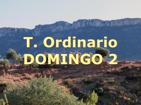 T. Ordinario DOMINGO 2.