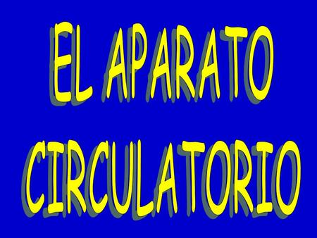 EL APARATO CIRCULATORIO.