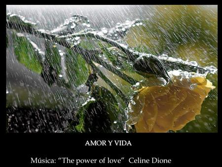 "Música: ""The power of love"" Celine Dione AMOR Y VIDA."