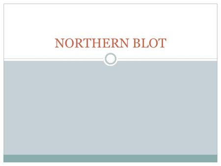 NORTHERN BLOT.