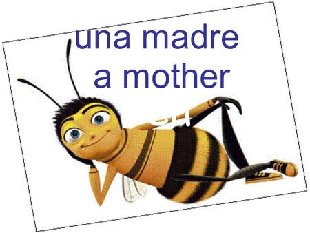 Ben una madre a mother. Ben julio July Ben veintiuno Twenty-one.