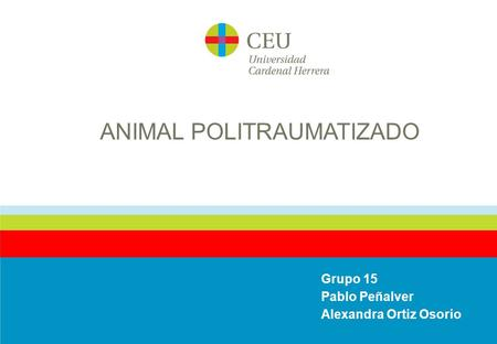 ANIMAL POLITRAUMATIZADO