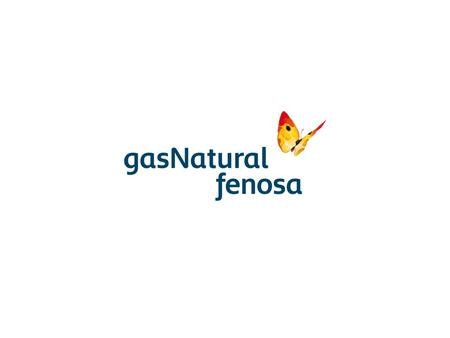GAS NATURAL CEGAS & ASEIF