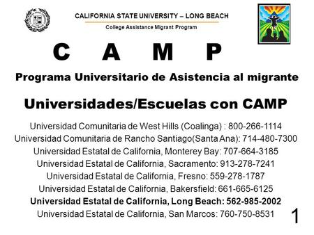Programa Universitario de Asistencia al migrante CALIFORNIA STATE UNIVERSITY – LONG BEACH ▬▬▬▬▬▬▬▬▬▬▬▬▬▬▬▬▬▬▬▬▬▬▬▬▬▬▬▬▬▬▬▬▬▬▬▬▬▬ College Assistance Migrant.