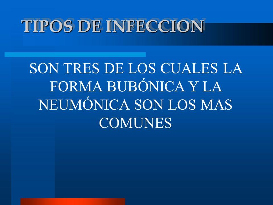 PESTE BUBÓNICA ES EL TIPO DE INFECCIÓN MÁS COMÚN.