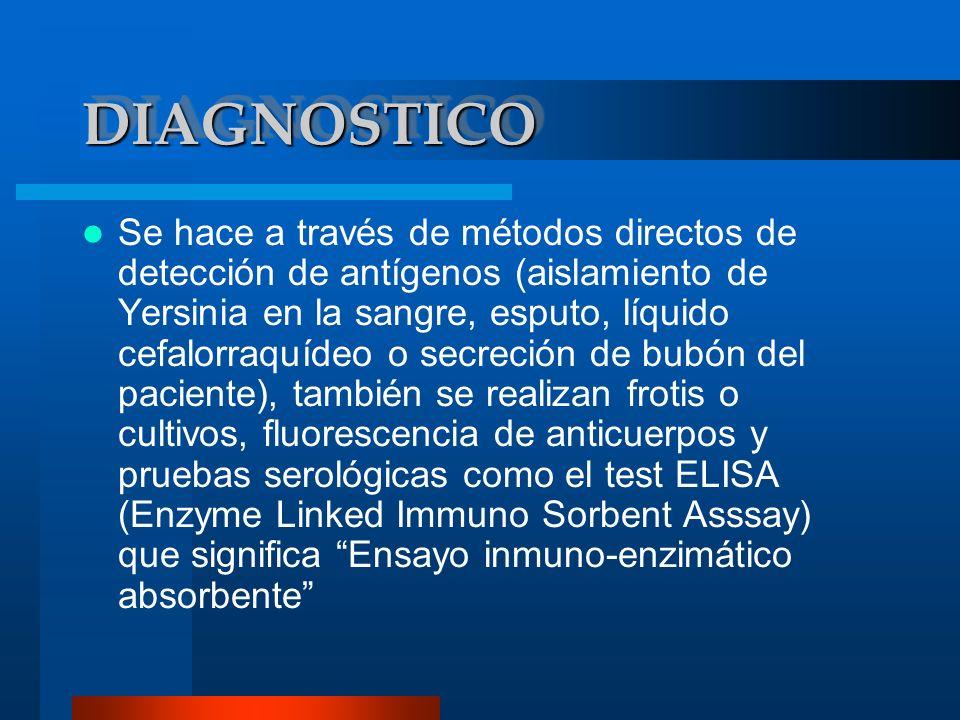 DIAGNOSTICODIAGNOSTICO ASPIRACION DEL BUBON PARA EL AISLAMIENTO EN PLACA DE AGAR SANGRE