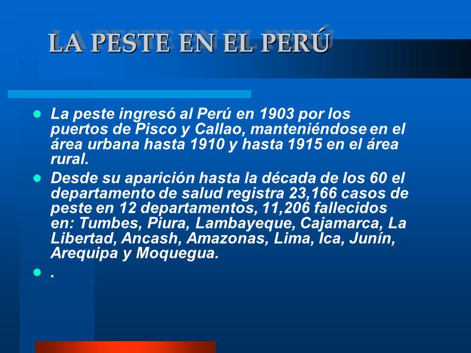 Entre 1966 y 1984 se presentaron brotes de menor intensidad en áreas silvestres, afectando a tres departamentos del norte: Piura, Lambayeque y Cajamarca.