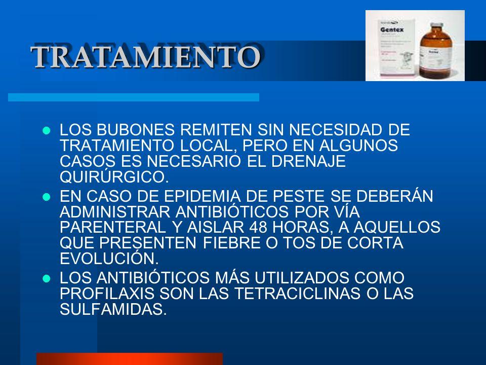PAGINAS DE INTERNET http://www.saludalia.com/Saludalia/servlets/contenido/jsp/ parser.jsp?nombre=doc_peste_rara2 http://www.scielo.org.pe/img/revistas/rins/v18n3- 4/a07fig01g.jpg