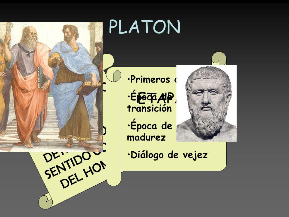 ARISTÓTELES Reacción en contra de la teoría de Platón Rechazo al dualismo Curiosidad por el mundo sensible El hombre esta formado por una única sustancia