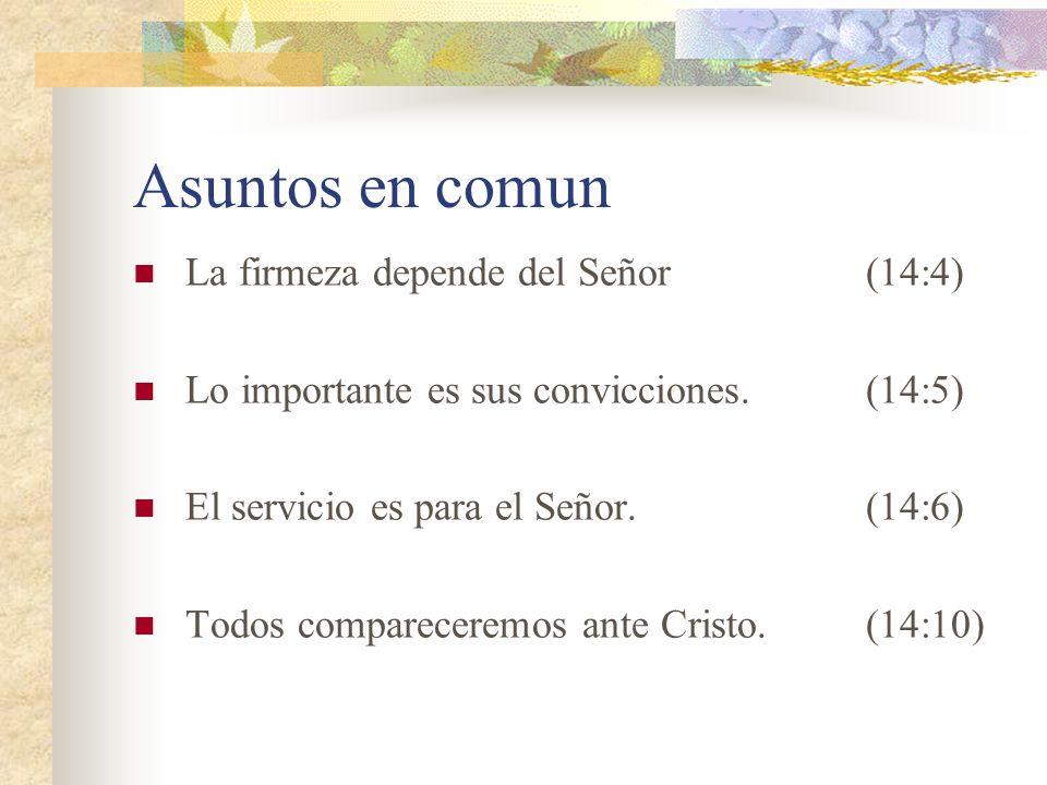 Asuntos en comun La firmeza depende del Señor(14:4) Lo importante es sus convicciones.