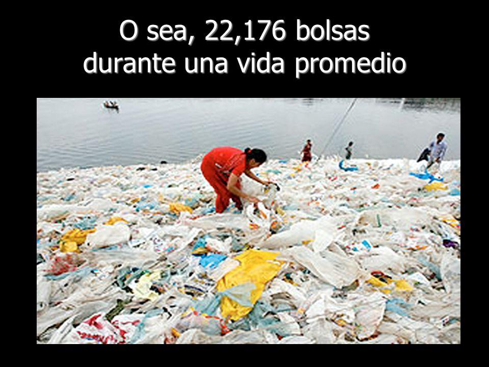 Si solo 1 de cada 5 personas en nuestro país hiciera esto, ahorraríamos 1.330.560.000.000 de bolsas durante nuestras vidas Si solo 1 de cada 5 personas en nuestro país hiciera esto, ahorraríamos 1.330.560.000.000 de bolsas durante nuestras vidas