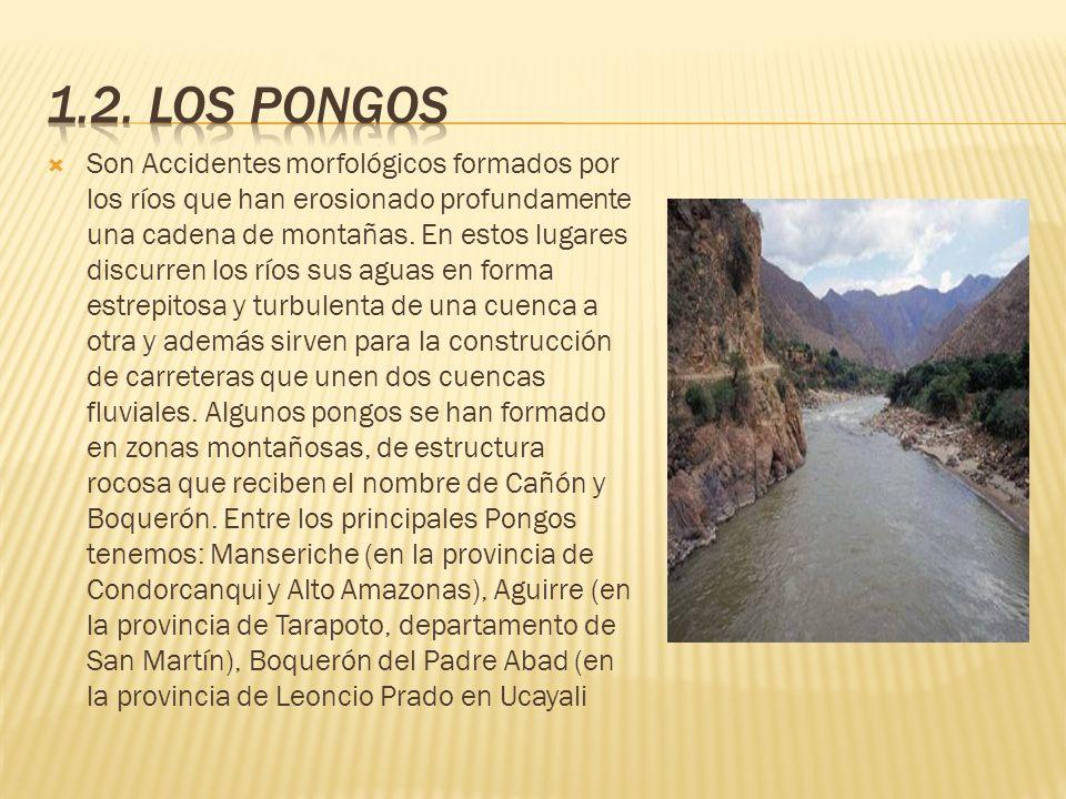 Son valles amplios que se encuentranlocalizadoentre las cadenas Central y Oriental de los Andes y en los afluentes de los ríos principales, Poseen suelos aluviales y conforman las áreas más productivas de la región.