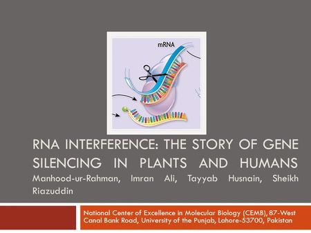 RNA INTERFERENCE: THE STORY OF GENE SILENCING IN PLANTS AND HUMANS Manhood-ur-Rahman, Imran Ali, Tayyab Husnain, Sheikh Riazuddin National Center of Excellence.