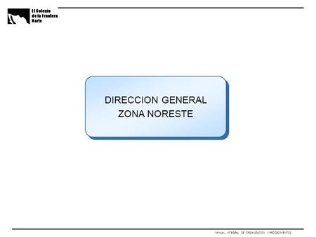 MANUAL INTEGRAL DE ORGANIZACION Y PROCEDIMIENTOS DIRECCION GENERAL ZONA NORESTE.