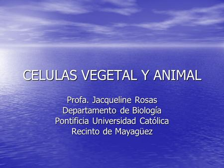 CELULAS VEGETAL Y ANIMAL