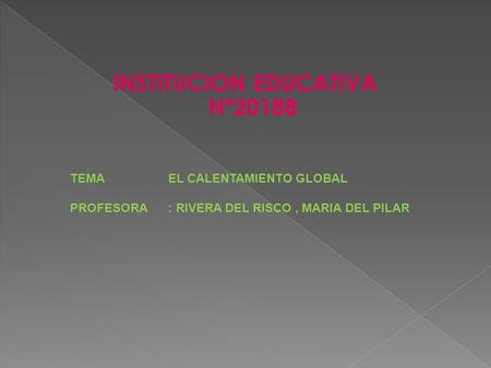 INSTITUCION EDUCATIVA Nª20188