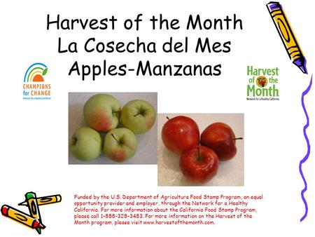 Harvest of the Month La Cosecha del Mes Apples-Manzanas Funded by the U.S. Department of Agriculture Food Stamp Program, an equal opportunity provider.