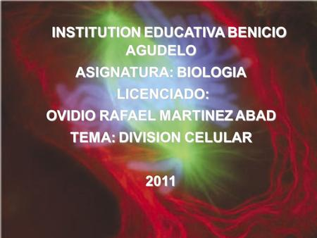 INSTITUTION EDUCATIVA BENICIO AGUDELO