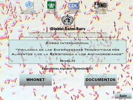 Buenos Aires, Argentina - Setiembre 2001 WHO Collaborating Centre for Foodborne Disease Surveillance, Atlanta, USA Instituto Nacional de Enfermedades Infecciosas.