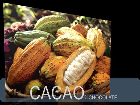 CACAO: cHOCOLATE.