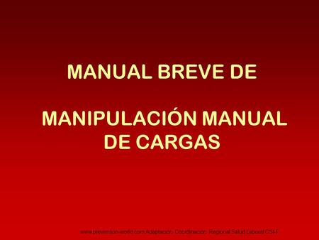 MANUAL BREVE DE MANIPULACIÓN MANUAL DE CARGAS