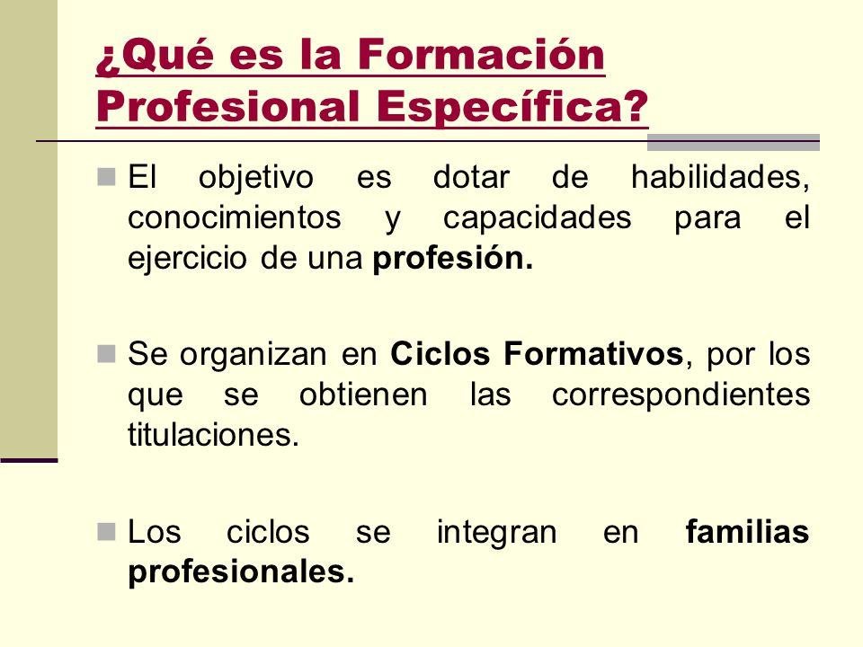 ¿Qué es la Formación Profesional Específica.