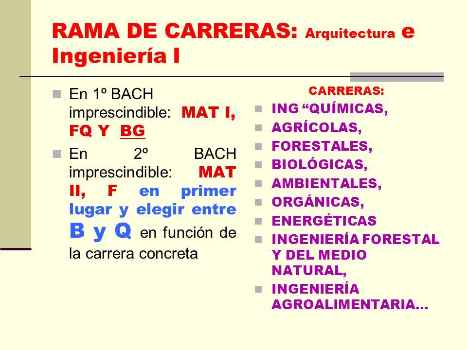 RAMA DE CARRERAS: Arquitectura e Ingeniería I En 1º BACH imprescindible: MAT I, FQ Y BG En 2º BACH imprescindible: MAT II, F en primer lugar y elegir entre B y Q en función de la carrera concreta CARRERAS: ING QUÍMICAS, AGRÍCOLAS, FORESTALES, BIOLÓGICAS, AMBIENTALES, ORGÁNICAS, ENERGÉTICAS INGENIERÍA FORESTAL Y DEL MEDIO NATURAL, INGENIERÍA AGROALIMENTARIA…