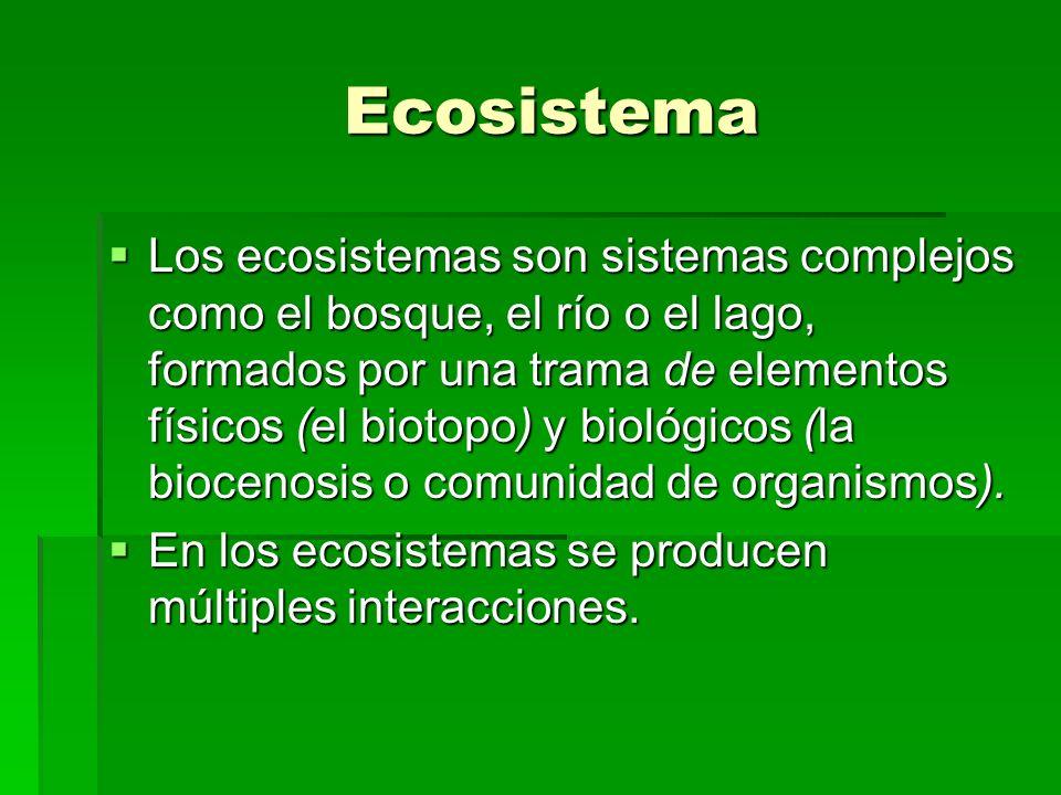 Biosfera o biósfera Biosfera o biósfera La biosfera es el ecosistema global.