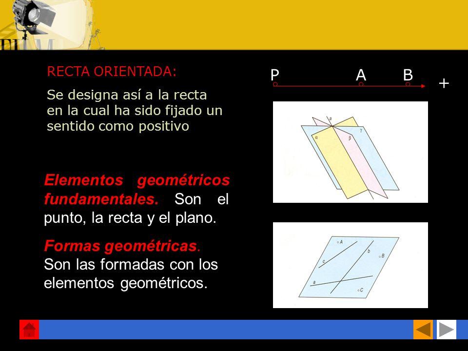RECTA ORIENTADA: Se designa así a la recta en la cual ha sido fijado un sentido como positivo PAB + Elementos geométricos fundamentales.