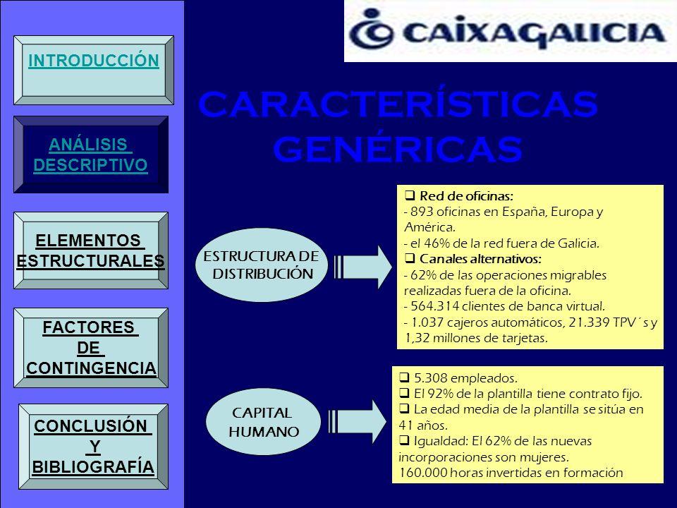 CARACTERÍSTICAS GENÉRICAS CLAVES DEL PROCESO Configuración de una estructura organizativa matricial, con plena integración entre las unidades de desarrollo de negocio y los canales de distribución.