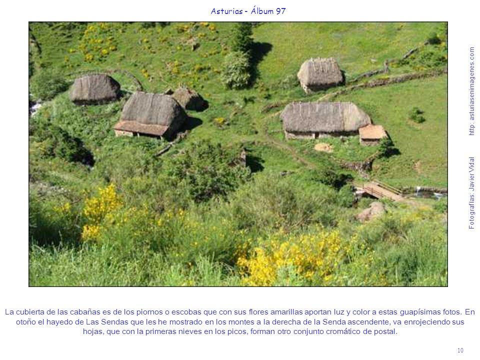 11 Asturias - Álbum 97 Fotografías: Javier Vidal http: asturiasenimagenes.com Espero que esta foto flipante de la Braña La Pornacal, con restos de nieve en los picos que la rodean y el mielero brezo rojo de sus altas laderas, se la haga llegar algún amigo a los Príncipes de Asturias para que la utilicen como salvapantallas de su ordenador y recuerden que en otoño del 2004, estuvieron reteitando el techo de la última cabaña que se ve al fondo de la foto, digo estuvieron pues aunque fue el Príncipe de Asturias quien reparaba el techo con escobas de piorno, su esposa Doña Letizia le aguantaba la escalera para que no cayera.