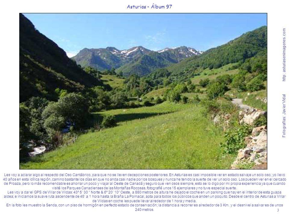 4 Asturias - Álbum 97 Fotografías: Javier Vidal http: asturiasenimagenes.com En esta imágen y en la próxima les muestro al aldea de Villar de Vildas, junto al impoluto río Pigüeña.