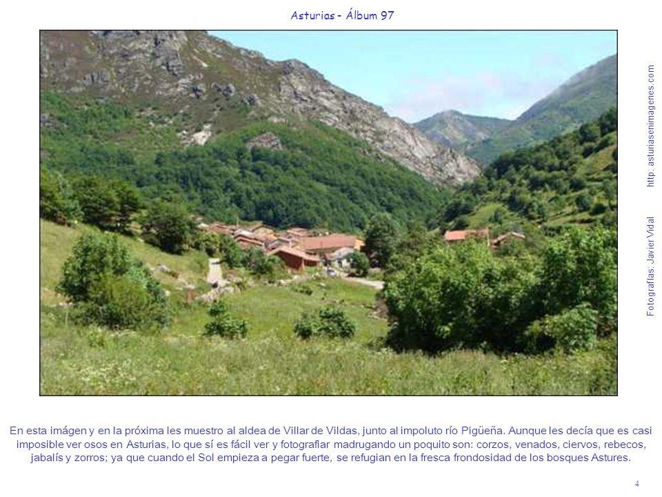 5 Asturias - Álbum 97 Fotografías: Javier Vidal http: asturiasenimagenes.com Vista desde más alto, de la aldea de Villar de Vildas.