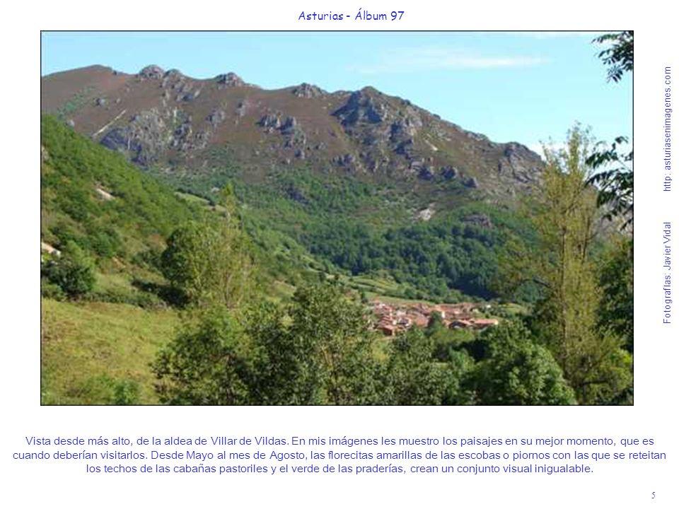 6 Asturias - Álbum 97 Fotografías: Javier Vidal http: asturiasenimagenes.com Abran bien sus ojos y disfruten el momento que les regalo, anticipo de lo que van a poder vivir acompañados de unos bosques de hayedos y otras variedades autóctonas inconmensurablemente bellos.
