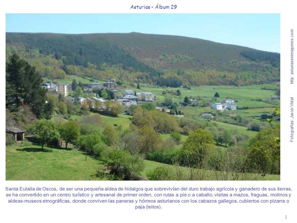 3 Asturias - Álbum 29 Fotografías: Javier Vidal http: asturiasenimagenes.com Desde el bosque de Pumares, donde hay un delicioso hotel rural con el mismo nombre, muy cerca de Santa Eulalia de Oscos, se inicia una suave senda de 2 h.