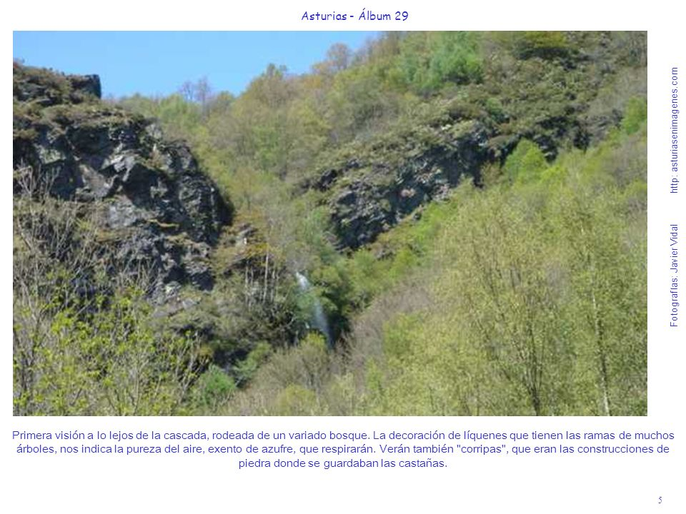 6 Asturias - Álbum 29 Fotografías: Javier Vidal http: asturiasenimagenes.com Esta bellísima visión de la acogedora seimeira o cascada es el premio a una excursión cultural, que seguro repetirán a lo largo de sus vidas.