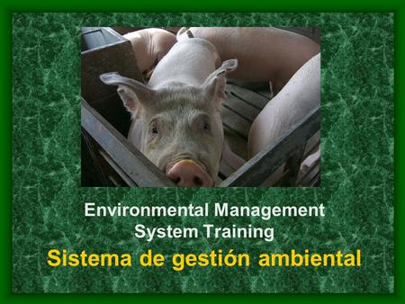 Environmental Management System Training Sistema de gestión ambiental.