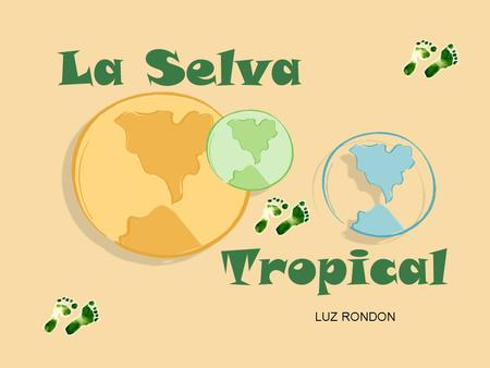 La Selva Tropical LUZ RONDON.