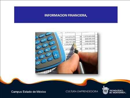 Campus Estado de México 1 INFORMACION FINANCIERA,.
