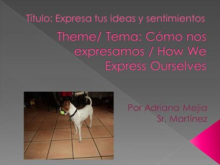 Theme/ Tema: Cómo nos expresamos / How We Express Ourselves